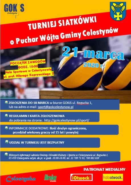 plakat turniej siatkówki 2020