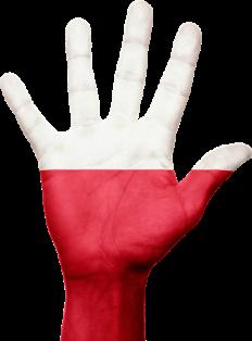 Patriotyczne i Sportowe Obchody 99. Rocznicy Odzyskania Niepodległości Polski