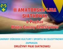 II Amatorska Liga Siatkówki o Puchar Wójta Gminy Celestynów