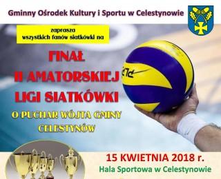 Finał II Amatorskiej Ligi Siatkówki o Puchar Wójta Gminy Celestynów