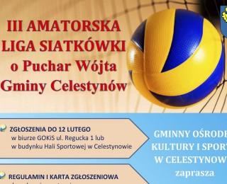 III Amatorska Liga Siatkówki o Puchar Wójta Gminy Celestynów