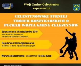 Celestynowski Turniej Trójek Koszykarskich o Puchar Wójta Gminy Celestynów