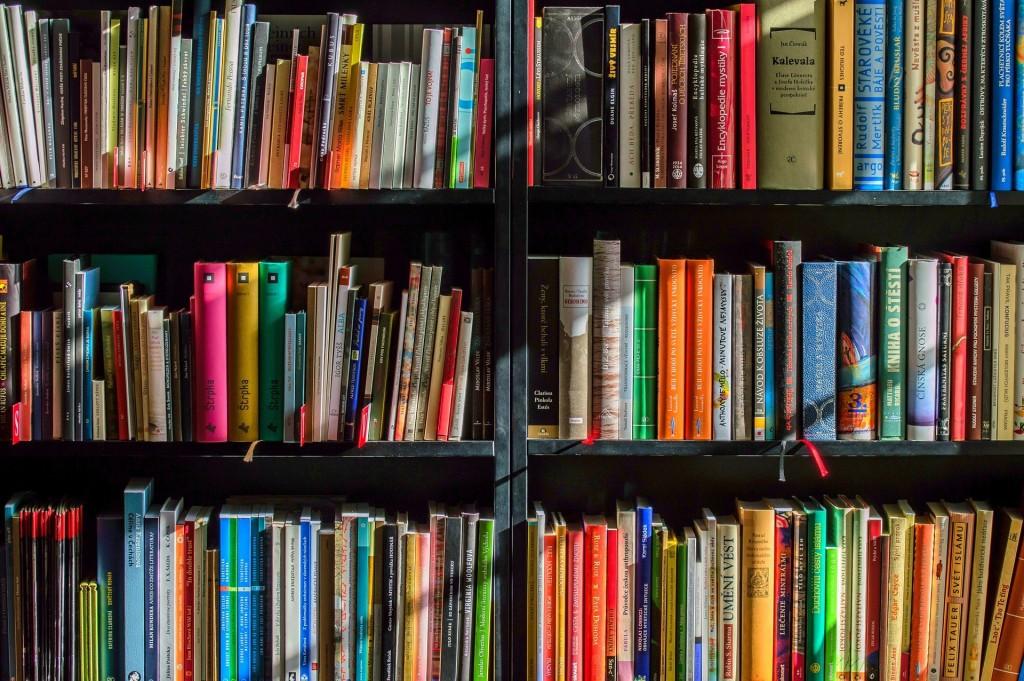 Biblioteka w Regucie wznawia działalność