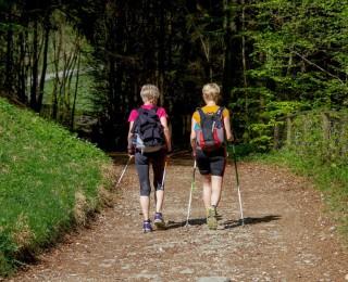 Marsz po zdrowie – bezpłatne zajęcia nordic-walking z instruktorem GOKiS